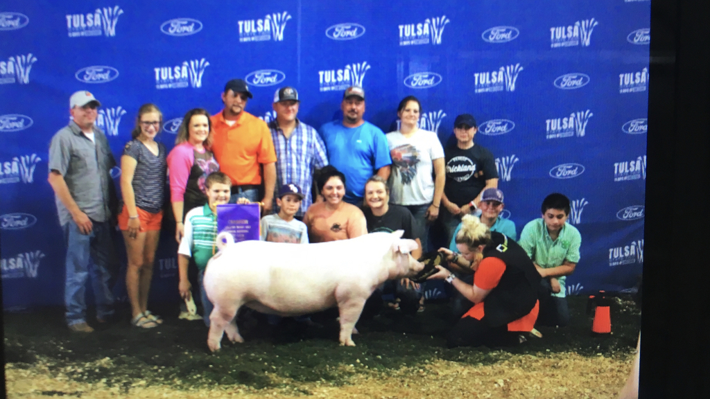 Ruger Champion gilt
